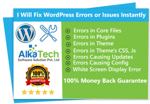 WordPress Errors or Issues Instantly