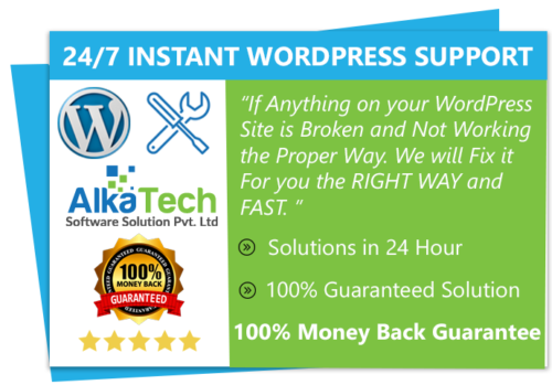WordPress instant support