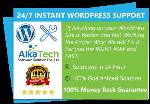 WordPress instant support